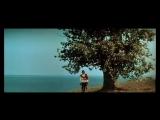 Фильм-сказка Сказка о царе Салтане (1966,СССР)