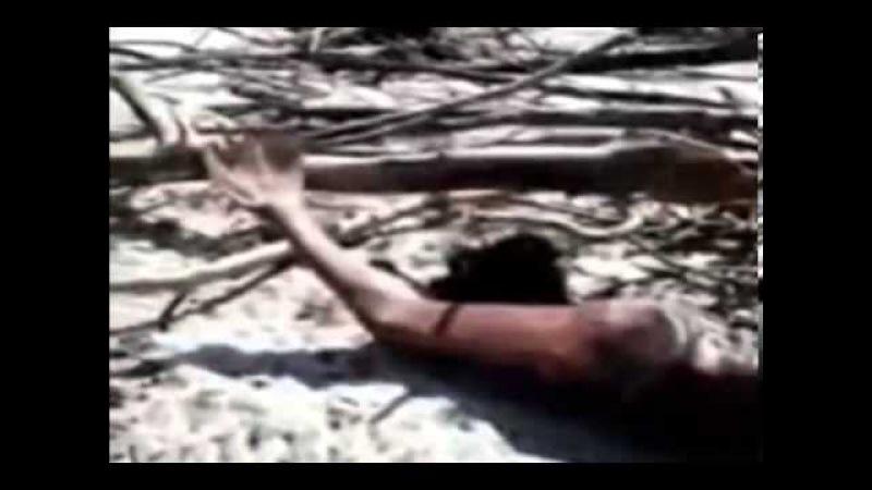 Найдено тело русалки