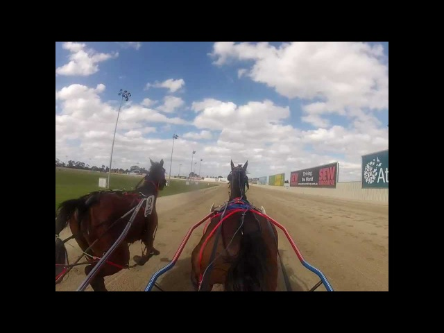 Helmet Cam - Harness Racing from the sulky