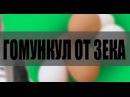 Гомункул Зек, Как Мошенники Гомункула Продавали на OLX Сландо, ЮБИЛЕЙНЫЙ ВЫПУСК ВСЕХ С 1 АПРЕЛЯ