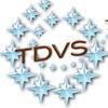 Академия TDVS