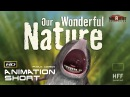 CGI 3D Animated Short Film OUR WONDERFUL NATURE Funny Animation by Tomer Eshed HFF Konrad Wolf