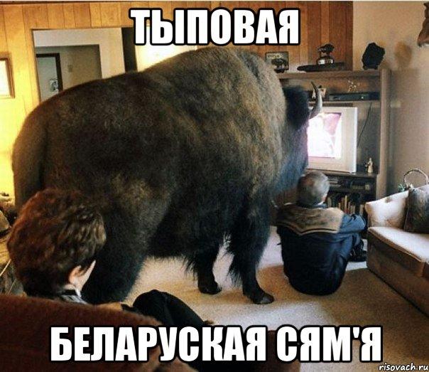 http://cs633824.vk.me/v633824065/b60/W8U5qBt-DjA.jpg