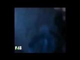 Format 18 Птица счастья(клип)