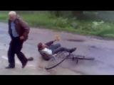 Собака подрезала мужика на велосипеде и он упал в лужу