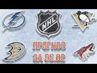 Прогнозы на матчи НХЛ Тампа Питтсбург и Анахайм Аризона
