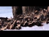 Alex M.O.R.P.H. feat. Natalie Gioia - The Reason (Original Mix)
