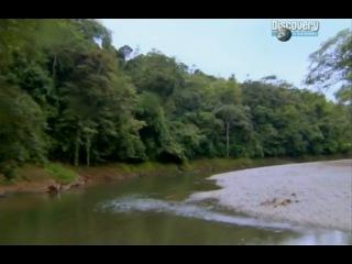 Выжить любой ценой 2 сезон 3 серия (Панама, Центральная Америка часть 1) с Беар Гриллс HD