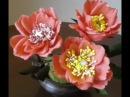 How to make Paper flowers Prickly Rose \ Rosa acicularis(Flower 9)