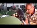 Old Bear - Antonini Knives