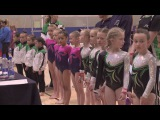Women's Artistic Gymnastics National & Regional Levels 2-4 All Around Finals - Day Two