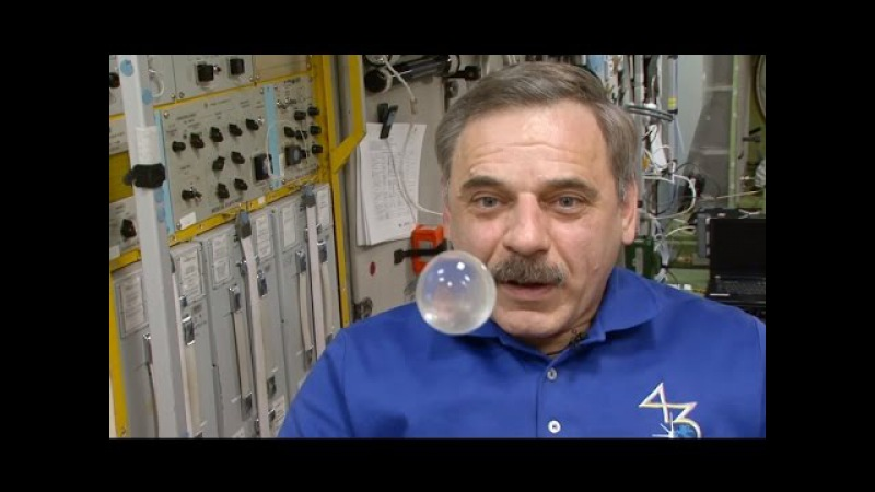 Год на орбите. Космическая еда. Фильм 4 A Year in Space. Space Food