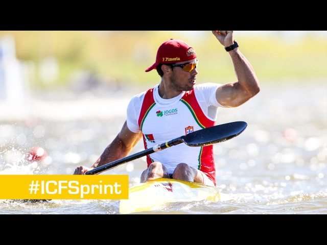 Final K1M 1000m Sprint 1   Montemor-O-Velho 2015