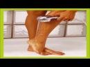 Zanahoria y Aloe Vera para Eliminar las Varices