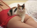 Смешные и милые животные из 2015 Компиляция. People with cat's & dog's.