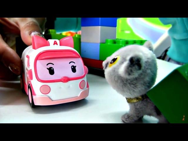 Vidéo pour enfants de Robocars. Sauvetage dun petit chaton