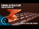 Intro to Realflow Inside Cinema 4D and Octane Render