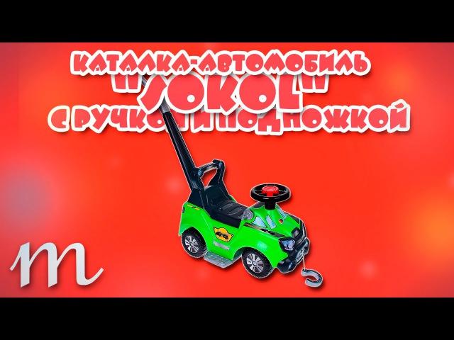 Каталки детские Полесье. Каталка-автомобиль Sokol с ручкой и подножкой Арт.48165