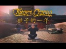 Year of the Monkey Tutting Dance One Shot YAK Films x Finger Circus x DJI Osmo 4K
