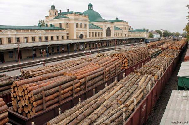 Задержанному экс-замминистра Сухомлину назначен залог в 100 млн грн, - Луценко - Цензор.НЕТ 5547