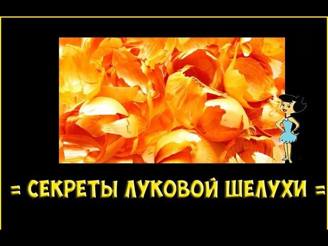 Луковая шелуха - секреты здоровья / Антиоксидант в шелухе лука / Кверцетин