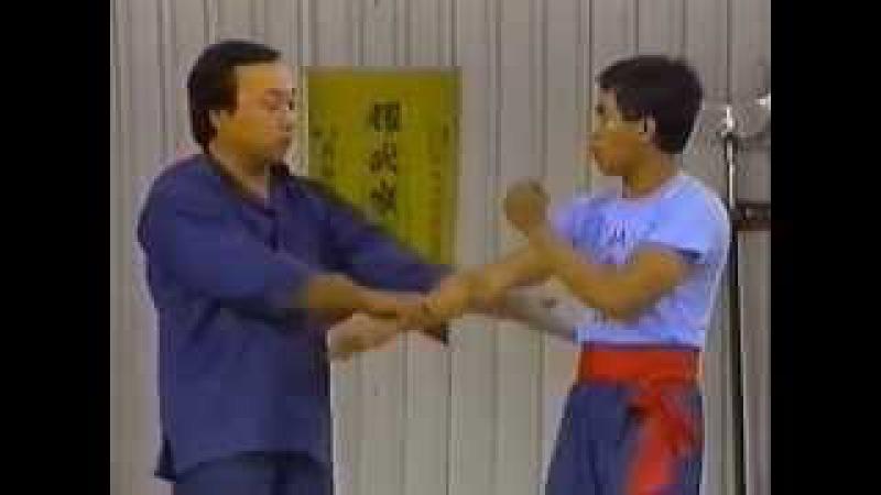Вин Чун Кунг фу мастера Фонга 3 Форма ЧАМ КИУ 1 Wing Chun Kung Fu Form CHUM KIU