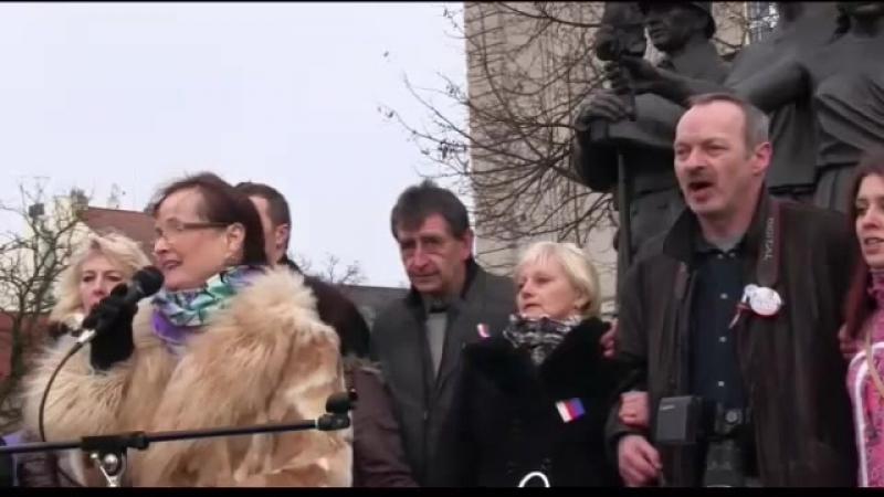 Plzeňský manifest 30.01.16 - 16. řečník - Jana Yngland Hrušková a Milan Michael Štrunc