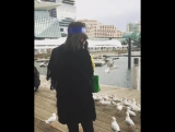 my dream is to be like that lady who so calmly accepted that there was a seagull on her head (and yes that is a finding dory hat