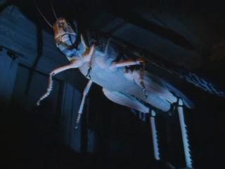 BBC. Империя чужих: насекомые. 01. Несокрушимые