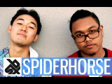 SPIDERHORSE    American Tag Team Beatbox Champion