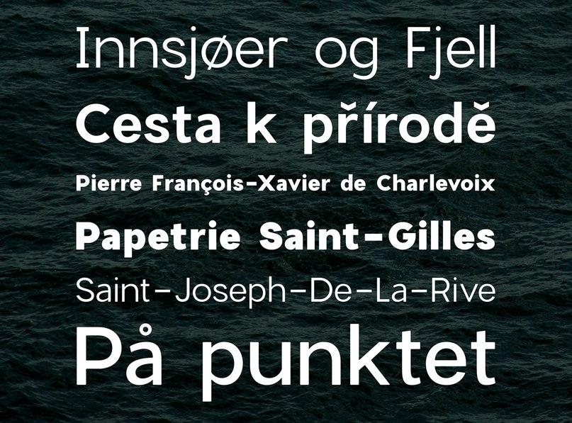 CharlevoixPro Full Family шрифт скачать бесплатно
