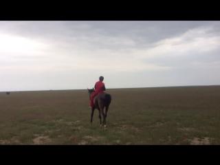 Бактобел(Козыкурен)-Шолак корган