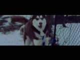 2yxa_ru_G4B_feat_Shmagi_feat_Cici_-_Davbrundebi_HbmNiwJZVKE