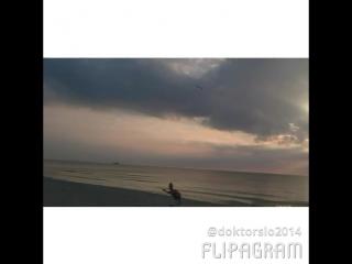 лучший пляж мира, летающая тарелка)
