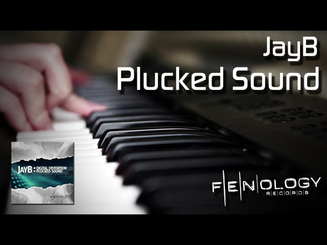JayB - Plucked Sound (Official Video)