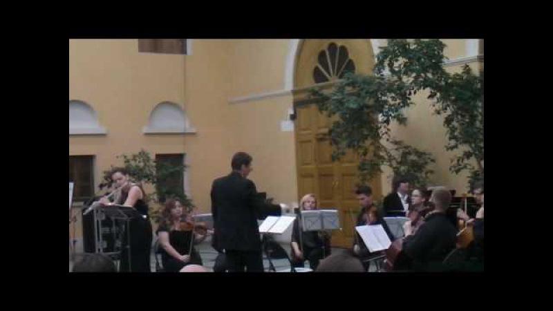 К.Ф.Э.Бах Концерт для флейты и струнных Анастасия Гусарова(флейта)