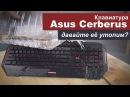 Давайте утопим клавиатуру Asus Cerberus?