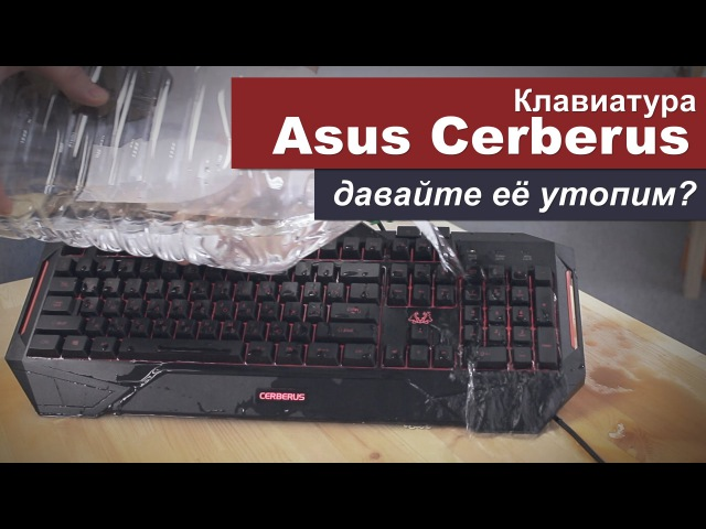 Давайте утопим клавиатуру Asus Cerberus