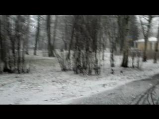Крестовский остров 31.12.2011, перед Новым Годом!