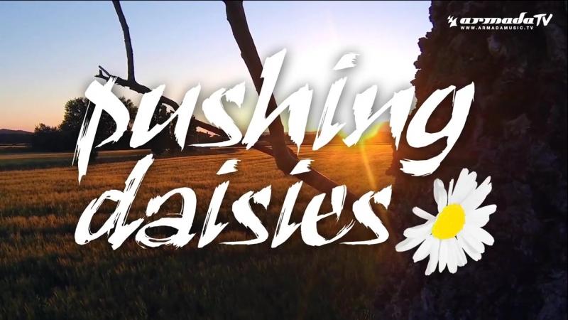 Stupid Goldfish feat. Jazzel - Pushing Daisies (Lyric Video)