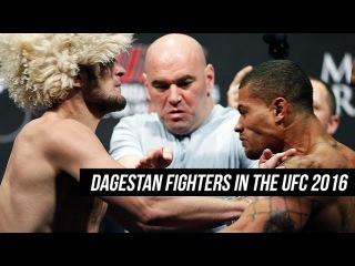 UFC Motivation 2016 - Dagestan Fighters in UFC - Дагестанские бойцы в UFC