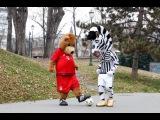 J &amp Berni, che sfida al parco! - A walk in the park with J and Berni