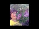 «мама» под музыку Уральские пельмени - с 8 марта, мама. Picrolla