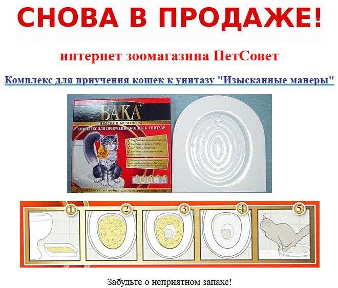 http://cs633918.vk.me/v633918277/c3ca/KqQysP9wJN0.jpg