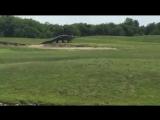Гигантский аллигатор пересекает гольф поле во Флориде...