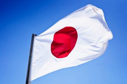 Türkiye'deki Japonya Sermayeli Üretici Firmalar