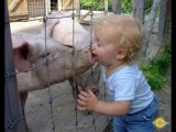 Приколы детей и животных #5 Смешно до слез :)