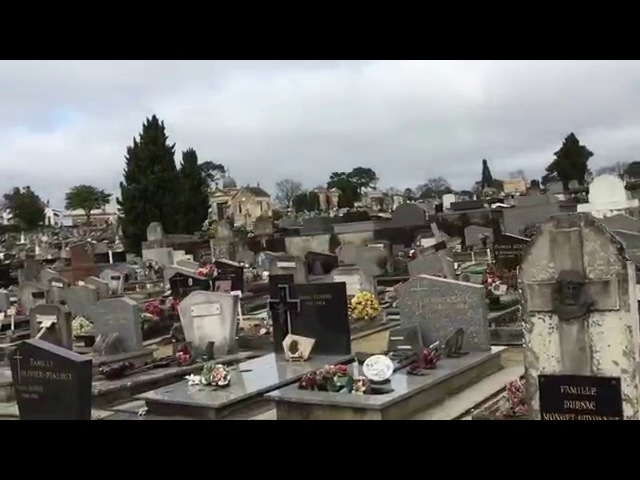 Аркашон второй день в Бордо