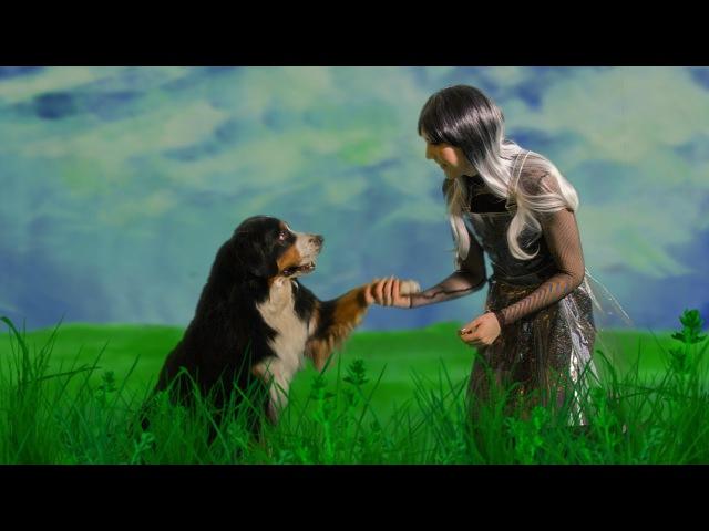 Lilla Lovis Vacker tass gullig hund