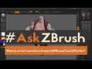 AskZBrush- What is or isnt Saved in a Project ZPR and Tool ZTL
